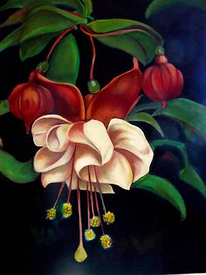 Painting - Fuchsias by Irena Mohr