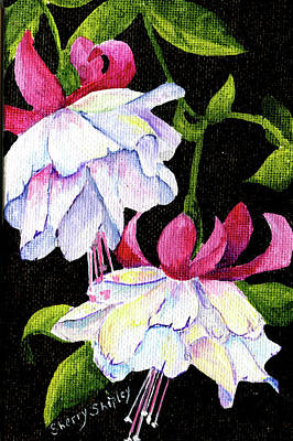 Painting - Fuchsias by Sherry Shipley