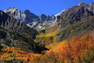 Photograph - Full Autumn Display At Mcgee Creek Canyon In The Eastern Sierras by Jetson Nguyen