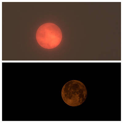 Photograph - Full Moon And Bloody Sun by Eti Reid