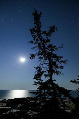 Photograph - Full Moon At Schoodic Point Maine by Marty Saccone