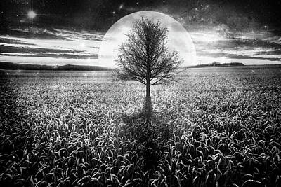 Photograph - Full Moon At Sunset In Black And White by Debra and Dave Vanderlaan