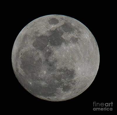 Photograph - Full Moon Closeup by Dale Powell