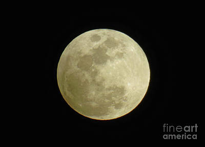 Photograph - Full Moon February 2017 by D Hackett