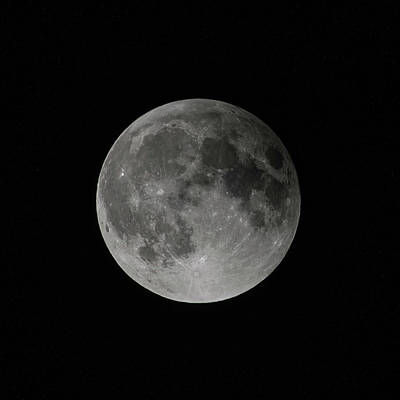 Photograph - Full Moon by Gary Lengyel