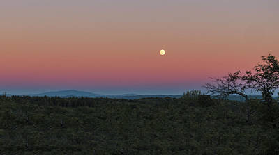 Hard Cider Wall Art - Photograph - Full Moon Horizon by Tom Singleton