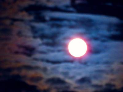 Photograph - Full Moon In Gemini - Psychedelic by Judy Kennedy