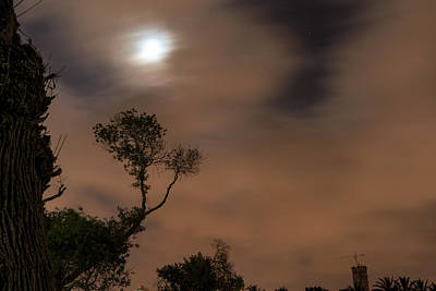 Photograph - Full Moon In The Park by Dubi Roman