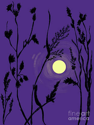 Drawing - Full Moon In The Wild Grass by Dawn Senior-Trask