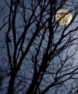Spooky Digital Art - Full Moon In Trees by Randy Steele