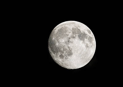 Photograph - Full Moon by Loree Johnson