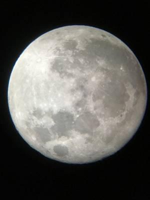 Photograph - Full Moon by Mandy Shupp