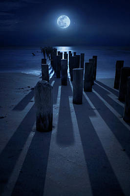 Photograph - Full Moon Over Naples Pier In Naples, Fl by Justin Kelefas