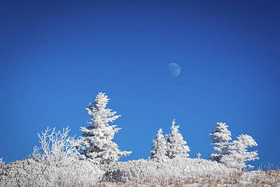 Photograph - Full Moon Over Roan Mountain by Serge Skiba