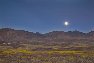 Photograph - Full Moon Over Superbloom by Kunal Mehra