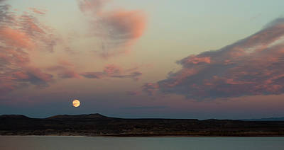 Photograph - Full Moon Over The Lake by Loree Johnson