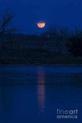 Photograph - Full Moon Over The Tongue by Shevin Childers