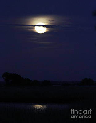 Photograph - Full Moon Reflecting In The Marsh by Myrna Bradshaw