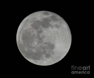Photograph - Full Moon by Renee Olson
