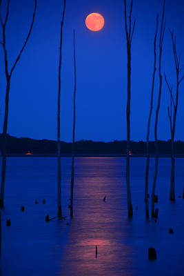 Photograph - Full Moon Rises 2 by Raymond Salani III