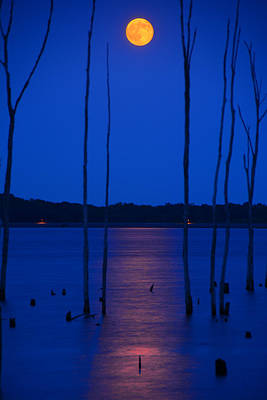 Photograph - Full Moon Rises by Raymond Salani III