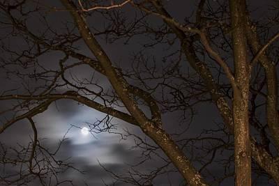 Full Moon Rising - 1  Original