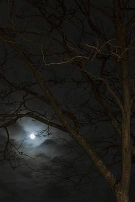 Photograph - Full Moon Rising - 2 by Hany J