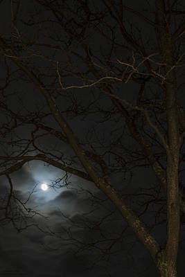 Full Moon Rising - 2 Original