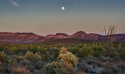 Photograph - Full Moon Rising In The Desert by Saija Lehtonen
