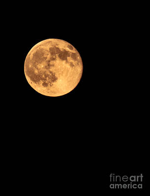 Full Moon Print by Robert Bales