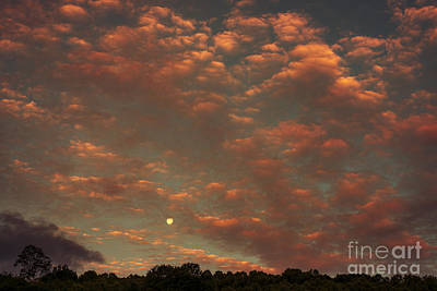 Full Moon Setting At Sunrise Print by Thomas R Fletcher