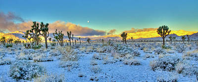 Photograph - Full Moon Sunrise Snow In Desert by Connie Cooper-Edwards