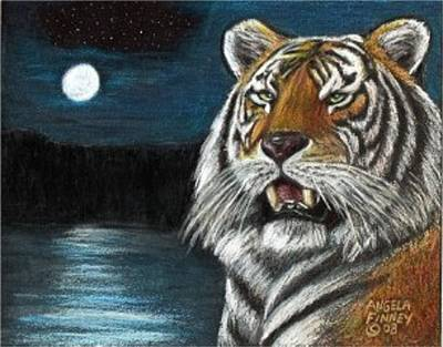 Full Moon Tiger Art Print by Angela Finney
