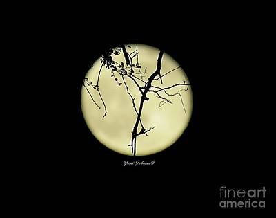 Photograph - Full Moon With Tree Branchs  by Yumi Johnson