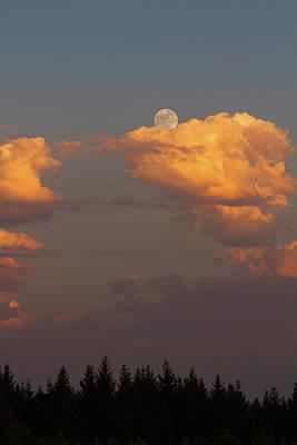 Full Moonrise Over Tree Silhouette Art Print by David Gn