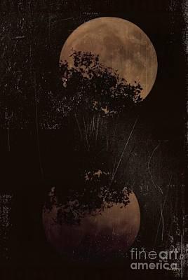 Photograph - Full October Moon 2016 by Mistys DesertSerenity