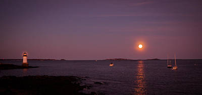 Photograph - Full Pink Moon Scene by Lilia D