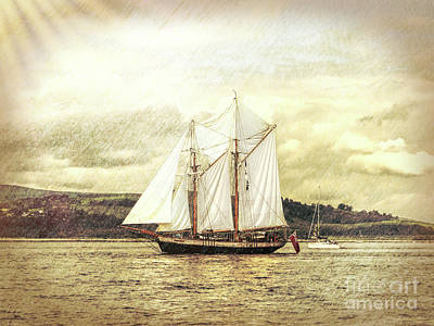 Photograph - Full Sail by Lynn Bolt