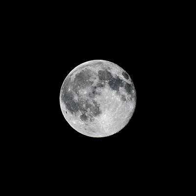 Photograph - Full Strawberry Moon June 2016 Square by Terry DeLuco