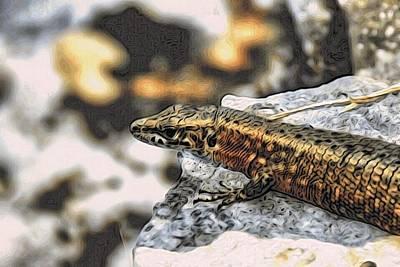 Full Up Lizard  Art Print