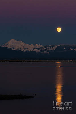 Photograph - Full Wolf Moon Over Mount Baker And Fidalgo Bay by Paul Conrad