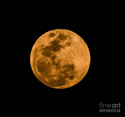Space Photograph - Full Moon 2  by Zina Stromberg