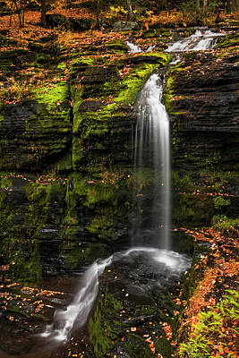 Photograph - Fulmer Falls George W.childs Park by Susan Candelario