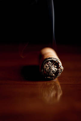 Zen Garden - Fuming Havana cigar  by Vadim Goodwill