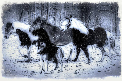 Photograph - Fun In The Snow by Pennie  McCracken