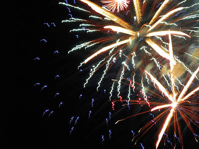 Photograph - Fun With Fireworks 14 by Mary Bedy