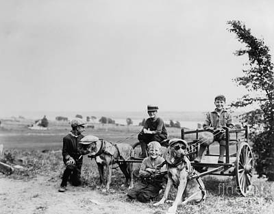 Funny Dog Photograph - Fun With The Dogs 1905 by Jon Neidert