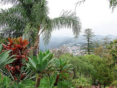 Photograph - Funchal Maderia by Brett Winn