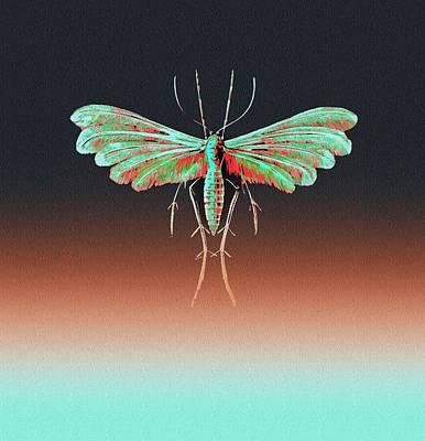 Fungus Moth In Greens Art Print by Diane Addis