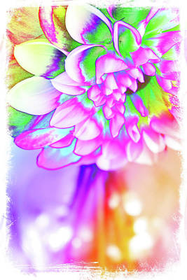 Digital Art - Funky Dahlia by Debbie Stott